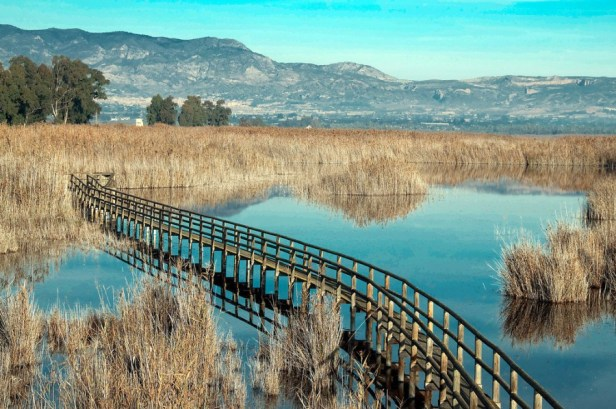 Parque_natural_del_Hondo