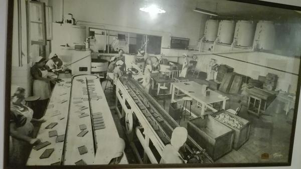 rsz_1foto_fábrica_industrializada[1]